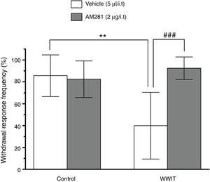Effect of cannabinoid spinal receptors in the antihyperalgesic effect of WWIT. Mice's CFA injected hindpaw after treatment in control water 25°C immersion+Saline i.t. (white bar) or WWIT 35°C (white bar). Half the mice received an i.t. injection of AM281 prior to control water 25°C immersion (gray bar) or WWIT 35°C (gray bar). Results show the antihyperalgesic effect of WWIT 35°C and how injection of naloxone nullify that effect. Each point represents the mean of eight animals; vertical lines show SD. WWIT, warm water immersion therapy; **P<.01 and ###P<.001.