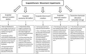 Planned intervention for Scapular Movement Training Group.