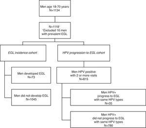 Men included in the HIM Study Brazil Biopsy Cohort.