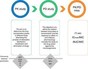 Pharmacokinetics (PK), pharmacodynamics (PD) and PK/PD integration. Pharmacokinetic parameters. AUC, area under the concentration-time curve; Cmax, maximal concentration or peak; EHL, elimination half-life; Cl, clearance; Vd, volume of distribution. Pharmacodynamic parameters. Emax, maximum effect, a measure of efficacy. ED50, effective dose to achieve 50% of the Emax, a measure of potency. MIC, minimal inhibitory concentration.