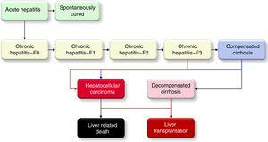 The HCV disease progression in the Markov model.