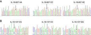(A) Representative sequences of IL-18 promoter polymorphism of −607A/C. (B) Representative sequences of IL-18 promoter polymorphism of −137C/G.