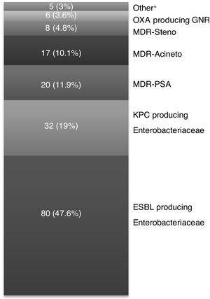 MDR GNR isolated (n=168). Other*: Enterobacteriaceae producing Amp-C cephalosporinases 3 (1.8 %), MDR Burkholderia cepacea 1 (0.6 %), MDR Aeromonas 1 (0.6 %).