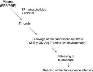 Schematic of the thrombin formation reaction and cleavage of the fluorescent substrate.
