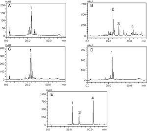 Phenolic profile of C. ambrosioides leaves: Crude extract (A, λ=365nm), chloroform fraction (B, λ=313nm), ethyl acetate fraction (C, λ=365nm), n-butanol fraction (D, λ=365nm) and standard compounds (e, λ=254nm): rutin (1), unidentified peak (2), quercetin (3) and crhysin (4). Chromatographic conditions described in the experimental section.