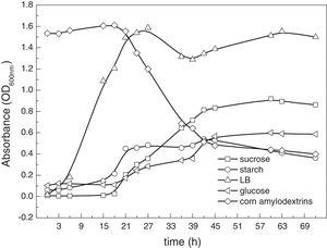 Growth curves of Cellulosimicrobium cellulans CWS2 in different MSM mediums (sucrose, starch, glucose and corn amylodextrins). All the experimental settings followed anaerobic cultivation requirements and the temperature was controlled constantly at 35°C. Bacterial cell numbers are estimated through the optical density measured at a wavelength of 600nm (OD600). For the curve of corn amylodextrins, the higher the OD600nm the higher concentration of corn amylodextrins due to its color, and the OD600nm decrease as the bacteria grow using the corn amylodextrins as carbon source.