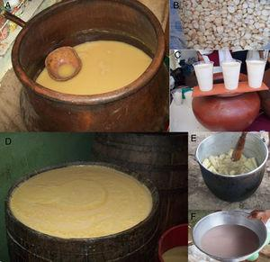 Chicha de jora (A)&#59; Morocho (white maize) (B)&#59; Chicha de morocho ready to drink (C)&#59; seven-grain chicha (D)&#59; cassava for chicha de yuca production (E)&#59; Chicha de yuca ready to drink after addition of seeds of the Ungurahua palm (F).