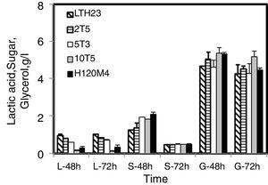 Lactic acid production by R. microsporus LTH23 and mutant strains using CG. Media L=lactic acid, S=sugar, G=glycerol, 48h=time at 48h, 72h=time at 72h.