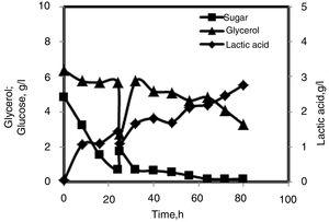 Fed-batch process for lactic acid production by R. microsporus LTH23 using CG media with 40% fresh media added at 24h.
