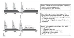 Características y ventajas de las pautas de insulina que diferencian los requerimientos basales y prandiales (pautas basal-bolus).