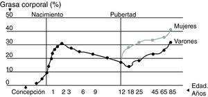 Cambios en la composición grasa a lo largo de la vida. Adaptada de: Warren y Shangold50.
