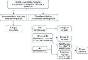 Algoritmo para el manejo del cáncer de tiroides diagnosticado durante el embarazo. Ca: carcinoma&#59; Eco: ecografía tiroidea&#59; Mts: metástasis&#59; TG: tiroglobulina.