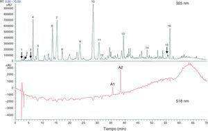 Componentes totales fenólicos y flavonoides estimados con cromatografía líquida de alta eficacia o high performance liquid chromatography (HPLC) a partir de extracto de flores secas de Hibiscus sabdariffa. Los componentes totales fenólicos y flavonoides se estimaron como 58,8±1,34mg y 13,57±0,65mg por gramo de flores secas, respectivamente63. 1 ácido hibiscus, 2 ácido hibiscus éster 6-metilo, 3 ácido gálico, 4 no identificado, 5 5hidroximetilfurfural, 6 ácido protocatéquico, 7 5-ácido caffeoylquinic, 8 feruloil derivatived, 9 ácido clorogénico, 10 4-ácido caffeoylquinic, 11 ácido cafeico, 12 ester galoil, 13 feruloil quinico derivatived, 14 kaempferol-3-glucósido, 15 quercetina derivatived, 16 tilirosida, Al delfinidina-3-sambubiosido, A2 cianidina-3-sambubiosido.