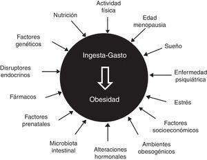 La obesidad como enfermedad multifactorial.