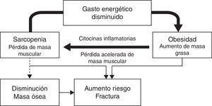 Génesis de la obesidad sarcopénica y su influencia sobre el metabolismo o??seo.
