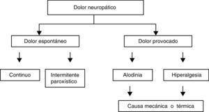 Componentes del dolor neuropático. Modificada de Haanpää y Treede12.