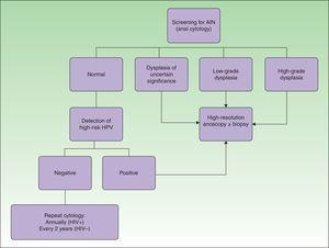 Screening algorithm for AIN based on analy cytology and taking into account the usefulness of detection of high-risk HPV genotypes. AIN indicates anal intraepithelial neoplasia; HIV, human immunodeficiency virus.