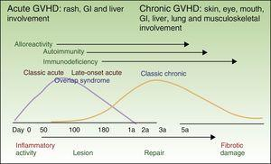 Schematic depiction of the courses of acute and chronic GVHD. GVHD refers to graft-vs-host disease; GI, gastrointestinal. Adapted from http://ccr.cancer.gov/resources/gvhd/about.asp.
