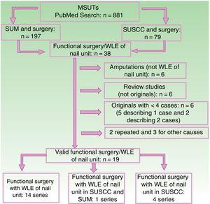 Flow chart showing the different stages in the literature search for publications on functional surgery with WLE of the nail unit in MSUTs. WLE indicates wide local excision; MSUT, malignant subungual tumor; SUM, subungual melanoma; SUSCC, subungual squamous cell carcinoma.