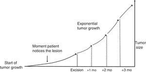 Theoretical exponential growth model for skin tumors.
