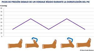 Pressure peaks under a stiff bandage during dorsiflexion of the foot.