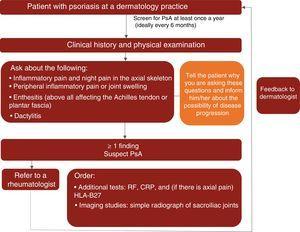 Clinical management algorithm for PsA in dermatology practices. CRP indicates C-reactive protein; HLA, human leukocyte antigen; RF, rheumatoid factor; PsA, psoriatic arthritis.