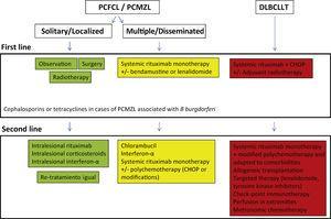 Treatment algorithm for primary cutaneous B-cell lymphomas.