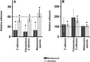 Effect of inhibition of GAG biosynthesis on yeast adhesion to skin cells. Graphs depict the effect of treatment with rhodamine B (dark bars) and genistein (light bars) on adhesion to keratinocytes (A) and fibroblasts (B). Data were normalized to yeast adhesion values recorded in untreated cells, to which an arbitrary value of 100 was assigned. Error bars represent standard deviation. *P<0.05.