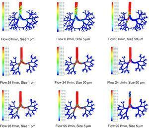 Results of the simulation with computational fluid dynamics (CFD) of particle behavior at different sizes (1pm, 5μm, and 50μm), which are dragged by flows of 6, 24, and 95l/min. The red areas indicate a high density of trapped particles. It can be observed that, as the size of the particle and flow increase, more particles tend to become trapped in more central regions of the airway due to impaction.