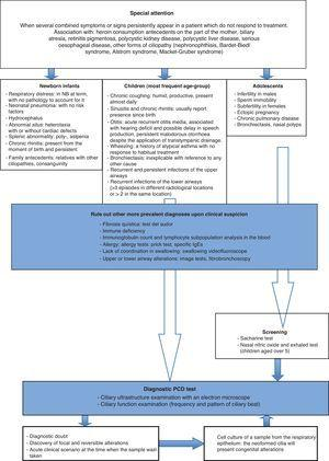 Diagnostic algorithm for primary ciliary dyskinesia.