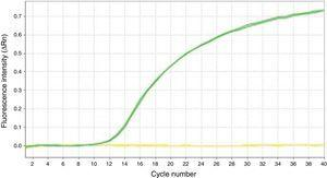 p16/INK4a amplification curve by qPCR-MS in a valid sample (green line) and an invalid sample (yellow line). (For interpretation of the references to color in this figure legend, the reader is referred to the web version of this article.)