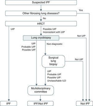 Idiopathic pulmonary fibrosis diagnostic algorithm proposed after systematic use of cryobiopsy before performing surgical lung biopsy.