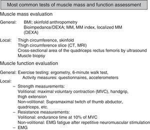 List of the most commonly used tests in routine clinical practice for evaluating muscle mass and dysfunction. Tests are classified as general or specific for evaluating muscle mass and function.