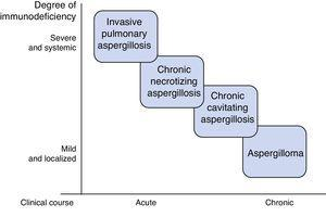 Association between degree of immunodeficiency and type of pulmonary aspergillosis.