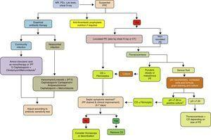 Treatment algorithm for parapneumonic pleural effusion. CD, chest drainage; CT, computed tomography; CU, chest ultrasound; G, generation; MR, medical record; PE, pleural effusion; PEx physical examination; PF, pleural fluid; PPE, parapneumonic pleural effusion. 1 If allergic to penicillin: quinolone+metronidazole. 2 If the pH cannot be determined, use LDH>1000IU/l or glucose<60mg/dl.