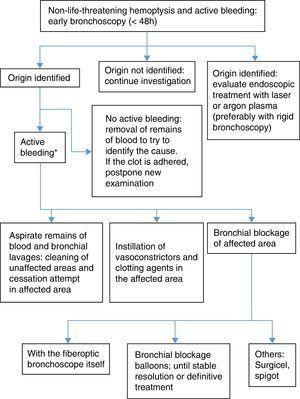 Bronchoscopy algorithm in non-life-threatening hemoptysis.