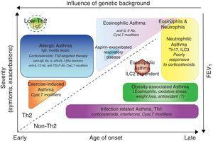 Clinical phenotypes of asthma and treatment. Phenotypes are represented according to the age of onset, severity of the disease, Th2 or non-Th2-dependent inflammation and influence of genetic background. In addition to classical therapy with β agonist, the specific treatments for each group are reported in italic. Ab, antibody&#59; CysLTs, Cysteinyl leukotrienes&#59; TSLP, thymic stromal lymphopoietin&#59; ILC, innate lymphoid cells.