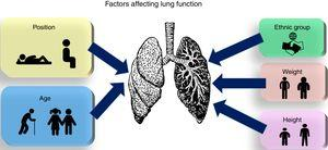 Factors affecting lung function.