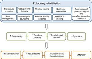 The components of a complete, integrated pulmonary rehabilitation program have a direct and positive physical and psychological effect on patients, helping them to become more proactive toward their disease, acquiring healthy lifestyle behaviors, thus reducing the risk of exacerbations and mortality. Adapted from Spruit et al.27