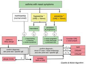 Diagnostic algorithm based on the loss of smell to discriminate between rhinitis and chronic rhinosinusitis in asthmatic patients. The figure shows the diagnostic algorithm for asthma patients with nasal symptoms to discriminate between rhinitis, with or without allergy, and chronic rhinosinusitis, with or without nasal polyps. CRSsNP: chronic rhinosinusitis without nasal polyps; CRSwNP: chronic rhinosinusitis with nasal polyps; NAR: non-allergic rhinitis; VAS: visual analog scale. *In case of hyposmia/anosmia, other causes, such as a head trauma (e.g., accident) or a viral syndrome (e.g., common cold or flu), should always be ruled out first.