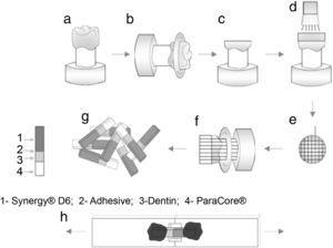 Schematic drawing of the sample preparation for the microtensile bond strength test.