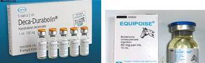 Embalagens comerciais de derivados da nortestoterona.