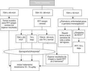 Diagrama de flujo para el tamiz neonatal. PFT: pruebas de función tiroidea; TSH: hormona estimulante de la tiroides; T4 L: tetrayodotironina libre; HCC: hipotiroidismo congénito central. 1 Micropene, criptorquida, hipoglucemia, defectos de la línea media. 2 La gammagrafía se puede realizar hasta 5 días después de haber iniciado tratamiento, pero no se debe retrasar el mismo en espera de los estudios de imagen. 3 En estos casos se deja que el clínico tome la decisión de iniciar el tratamiento de inmediato y revalorar a los 3 años, o postergar la decisión tres semanas con nueva medición de hormonas tiroideas y estudios de imagen. Basado en el Consenso de la Sociedad Europea de Endocrinología Pediátrica para el Tamizaje, Diagnóstico y Tratamiento del Hipotiroidismo Congénito (Léger y colaboradores, 2014).