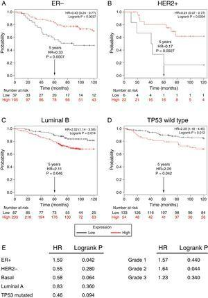 Low expression of TRPM2 mRNA correlates with poor outcome in patients with ER- and HER2+ breast cancer. Kaplan-Meier graphs show the overall survival prognosis of breast cancer patients censored at 120 months, based on high or low TRPM2 tumor mRNA expression. Patients with expression above the median are shown in red, and patients with expression below the median in black. (A) ER- breast cancer patients. Upon dividing the patients by TRPM2 mRNA level, those with low expression (n=37) had lower overall survival probability over time (logrank P=0.0037) than those with high expression (n=105). (B) HER2+ breast cancer patients. Patients with low expression (n=6) had lower overall survival probability over time (logrank P=0.0094) than those with high expression (n=22). Curves were statistically significant. (C) Conversely, Luminal B breast cancer patients with high expression (n=233) had lower overall survival probability over time (logrank P=0.014) than those with high expression (n=87), as well as (D) patients with TP53 wild-type breast cancer. Low expression (n=133), high expression (n=54), logrank P=0.012. Curves were statistically significant. (E) Summary of hazard ratios (HR) and logrank P values of overall survival curves of patients with ER+, HER2-, Basal, Luminal A, and TP53 mutated breast cancer subtypes, and grade 1-3 tumors.