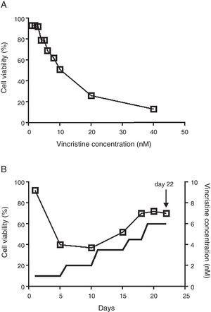 The CCRF-SB cell line is sensitive to vincristine. A. To obtain the IC50 (10nM), cells were exposed to growing concentrations of vincristine for 48h. B. Cell viability (□) and vincristine concentration (—) during the gradual adaptation protocol. The arrow shows the time point at which cells were harvested for proteomic studies.