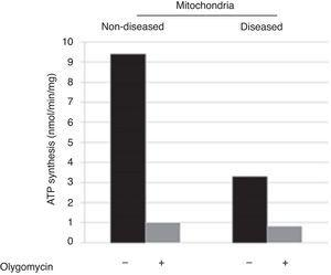 ATP-synthesis in skin fibroblasts isolated mitochondria showed a decrease of ≥ 60%, which corroborates the mitochondriopathy.