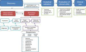 The biomarker development process.