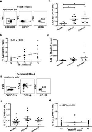 Detection of innate lymphoid cells group 2 in human hepatic tissue and peripheral blood. Representative plots of the gating strategy for the identification of ILC2 (CD45+ lymphocyte gate, CD3−, CD19−, CD127+, CD294+) by flow cytometry in (A) hepatic tissue or (E) peripheral blood. (B) Comparison of the percentages of ILC2 isolated from hepatic tissue of healthy individuals (n=7) with histologically confirmed METAVIR score F0, patients with fibrosis (n=9, F1–F2), and with cirrhosis (n=12, F3–F4). (C) A positive correlation between percentages of ILC2 and METAVIR scores is shown. (D) Absolute numbers of ILC2 per gram of hepatic tissue were not significantly different between the three groups. (F) Percentages of ILC2 from peripheral blood of healthy (n=16), fibrotic (n=8), and cirrhotic (n=11) samples were compared and no significant difference was detected. (G) No correlation between percentages of peripheral blood ILC2 and METAVIR score was found. Each data point represents an individual patient and the values are shown as mean±SEM. The groups are compared using Kruskal–Wallis test with Dunn's post-test. Correlation analysis is performed by Spearman rank correlation test (r and P values are indicated in the figure). *P<0.05. ILC2, innate lymphoid cells group 2; FSC, forward scatter; SEM, standard error of the mean.