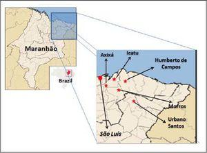Geographic location of the five municipalities sampled in northeastern Maranhão, Brazil. Each star represents one municipality. The red circle indicates de state capital, São Luis. Source. Modified from: Wikimedia Commons -https://commons.wikimedia.org/wiki/ File:Maranhao_MesoMicroMunicip.svg#/media/File:Maranhao_MesoMicroMunicip.svg