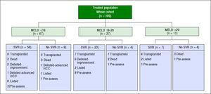 Flowchart of outcomes for whole cohort of treated patients.